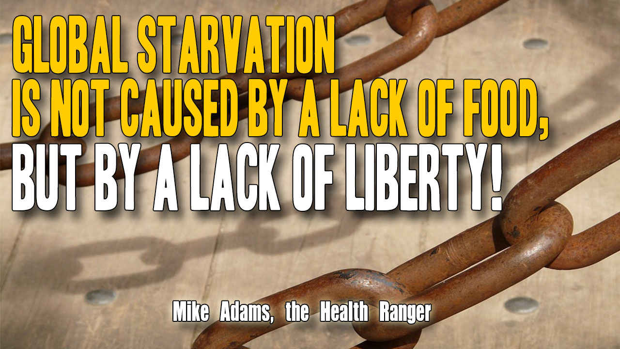 Global starvation is not caused by a lack of food, but by a lack of LIBERTY! (Audio)